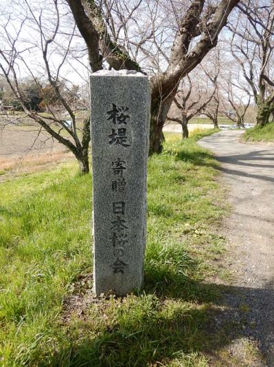 春の小噺♪(3月21日の走行)_b0136045_15212702.jpg