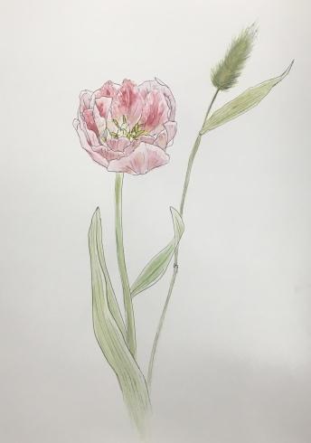 上野日本画教室。_c0160745_21251298.jpeg