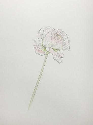 上野日本画教室。_c0160745_21252525.jpeg
