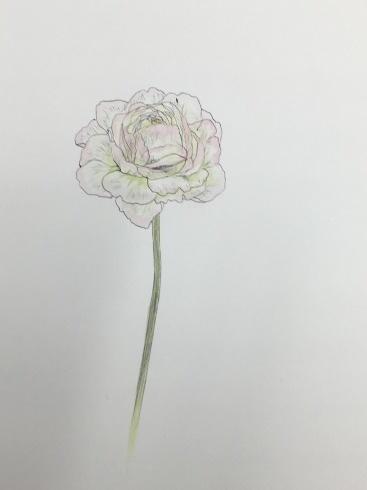 上野日本画教室。_c0160745_21253894.jpeg