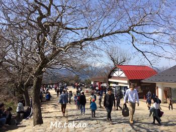 やはり高尾山は混んでいた。_a0335352_15451098.jpg