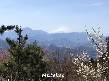 やはり高尾山は混んでいた。_a0335352_15455761.jpg