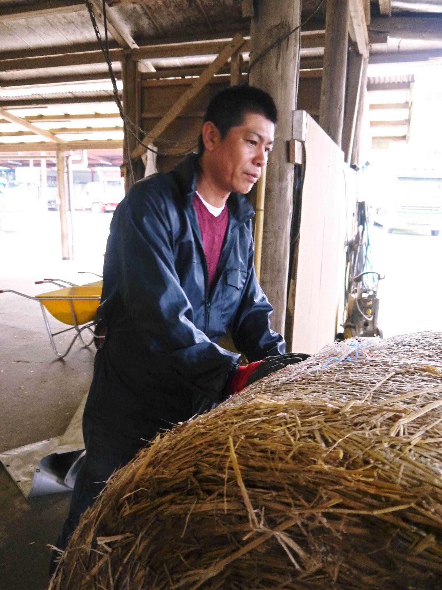 熊本県産黒毛和牛の精肉販売に向けて 「中野畜産」の牧場を現地取材!こだわりのエサについて!_a0254656_17050796.jpg