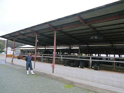 熊本県産黒毛和牛の精肉販売に向けて 「中野畜産」の牧場を現地取材!こだわりのエサについて!_a0254656_17161765.jpg