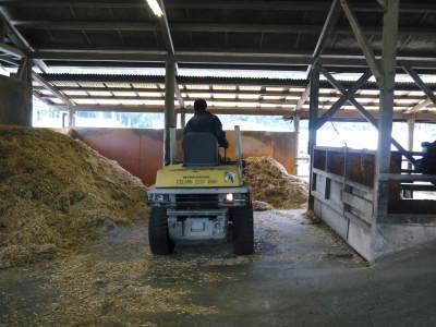 熊本県産黒毛和牛の精肉販売に向けて 「中野畜産」の牧場を現地取材!こだわりのエサについて!_a0254656_17223725.jpg