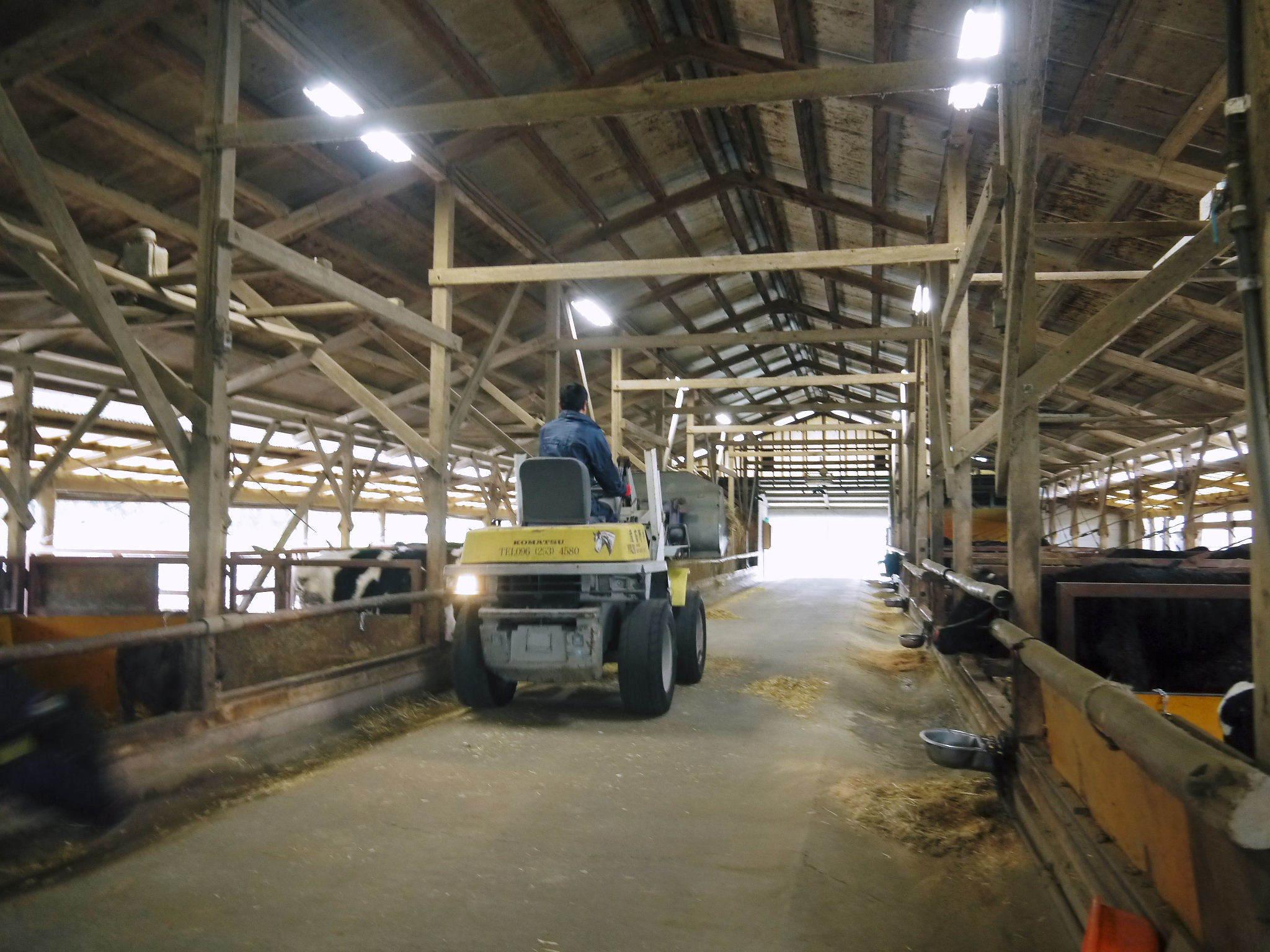 熊本県産黒毛和牛の精肉販売に向けて 「中野畜産」の牧場を現地取材!こだわりのエサについて!_a0254656_17244915.jpg