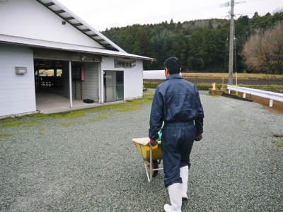 熊本県産黒毛和牛の精肉販売に向けて 「中野畜産」の牧場を現地取材!こだわりのエサについて!_a0254656_17365053.jpg
