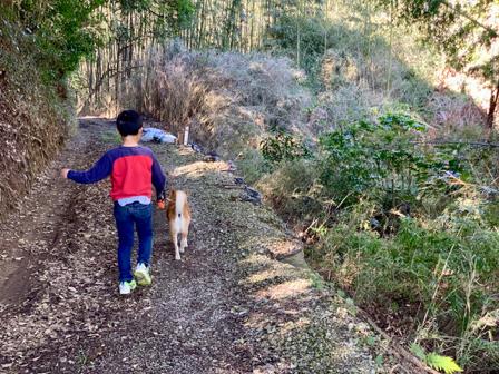 少年と柴犬と墓参り_b0247073_10565632.jpg