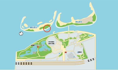 上の池(上空)と東なぎさ北側にクロツラヘラサギが!_e0046474_11123847.jpg