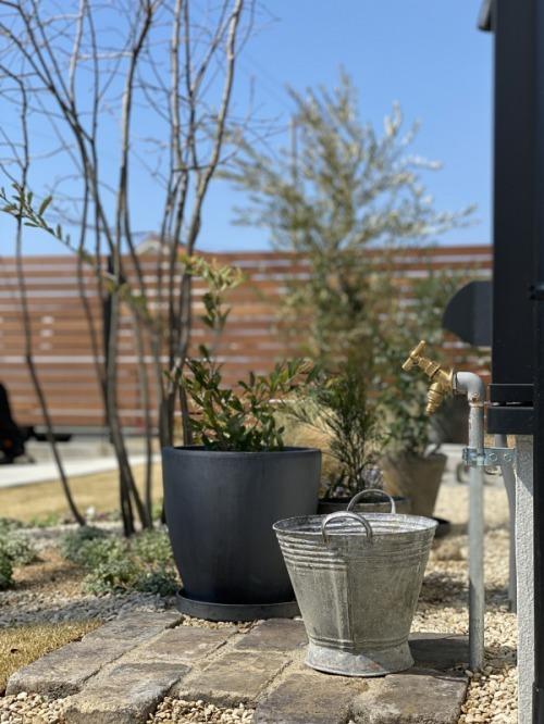 garden!_b0239082_17382437.jpg