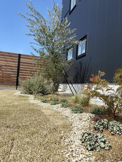 garden!_b0239082_17394325.jpg