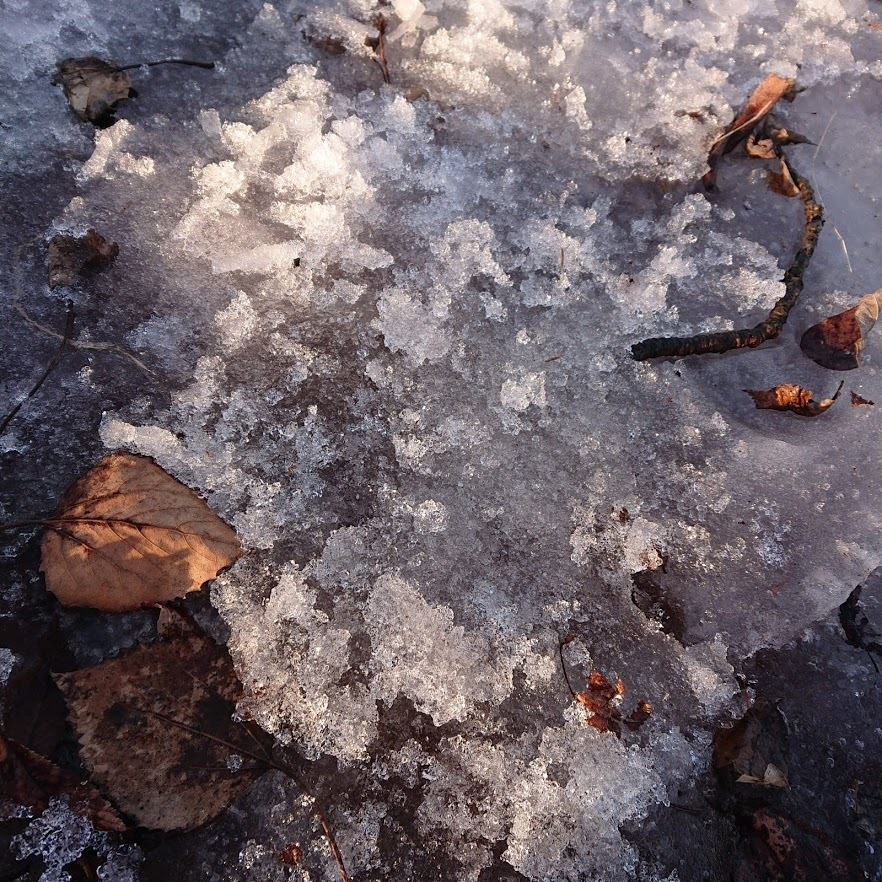 [English] lugworm / [photo] 雪解けの風景(4)_e0132084_09420398.jpg