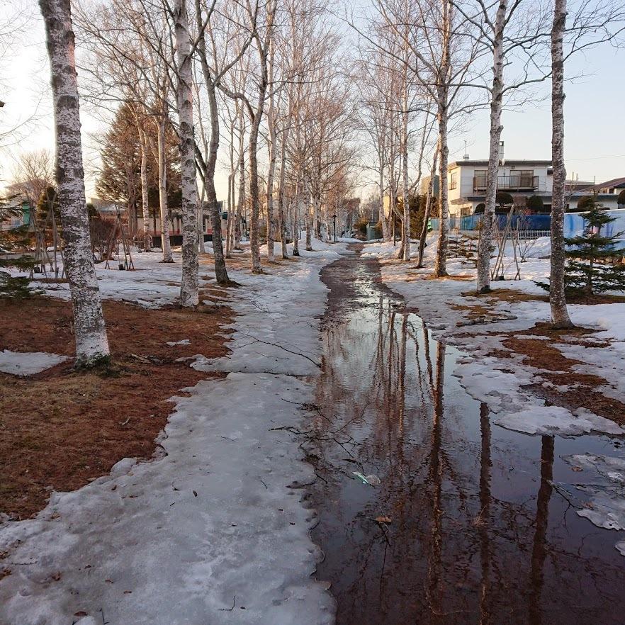 [English] pond skater / [photo] 雪解けの風景(6)_e0132084_10065957.jpg