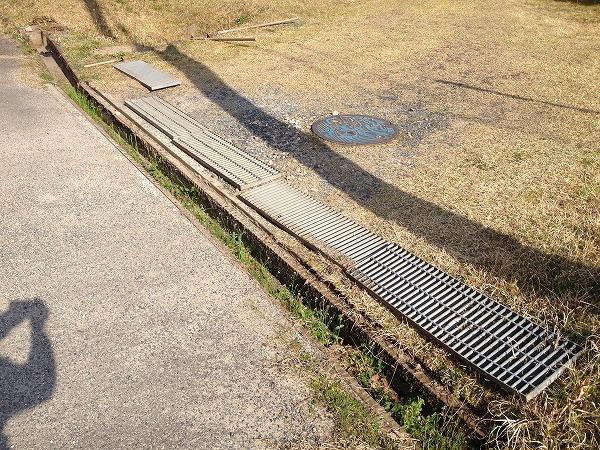 水路の掃除_e0052385_21095762.jpg
