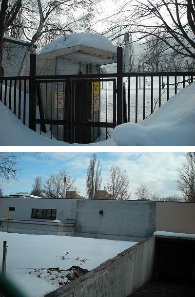 サクシュコトニ川の冬-2020-(2)_f0078286_08504344.jpg