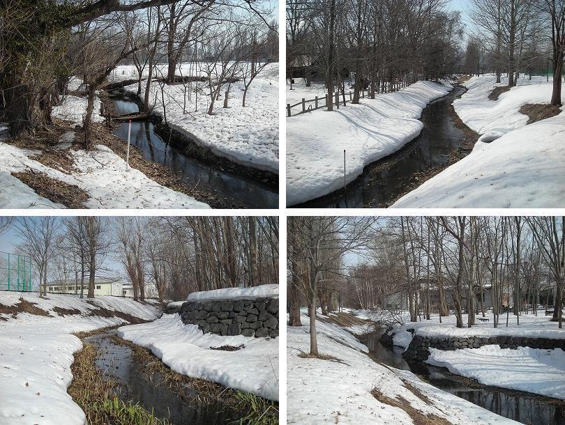 サクシュコトニ川の冬-2020-(2)_f0078286_08530893.jpg
