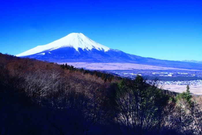 令和2年3月の富士 (10) 二十曲峠の富士_e0344396_08473879.jpg