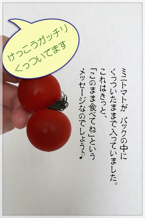 """""""共食い""""_e0235910_09495935.jpg"""