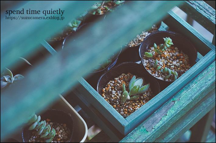 静かに過ごす_f0100215_00025201.jpg