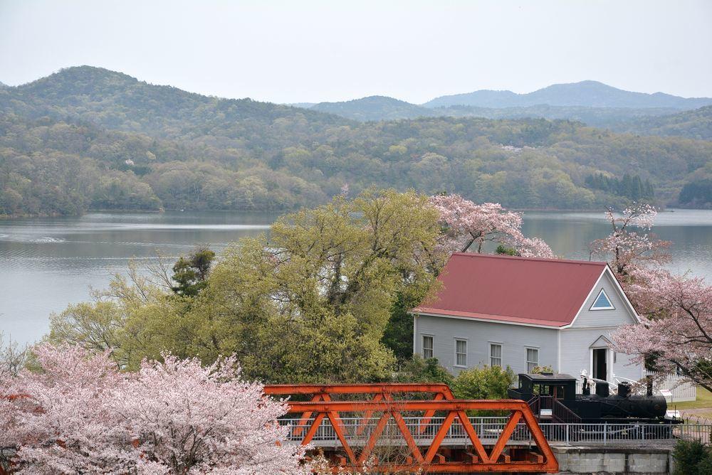 六郷川橋梁付近の桜_e0373930_20190454.jpg
