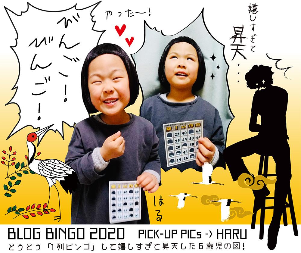 【BLOG BINGO 2020】PICK-UP PICs : とうとう「1列ビンゴ」して嬉しすぎて昇天した6歳児の図!_d0018646_17374288.jpg