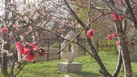 春のおとづれ_c0141652_15241664.jpg