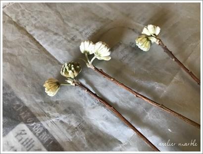 かわきばな step2 ~春の芽吹きをイメージしたリース~_a0310054_10475659.jpg