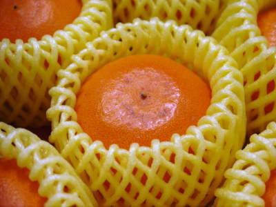 究極の柑橘「せとか」 令和2年度も大好評でリピート購入続出!今期発送予定分はまもなくカウントダウン!_a0254656_16344907.jpg
