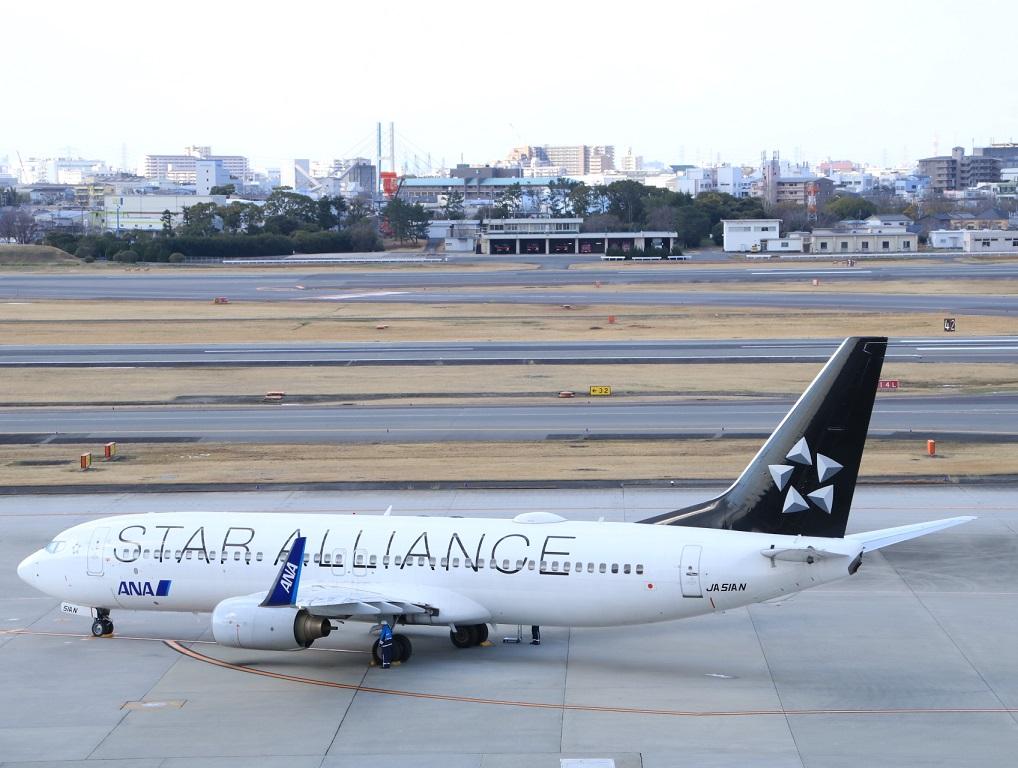 ANAウイングス 737-800 スターアライアンス塗装_d0202264_18321495.jpg