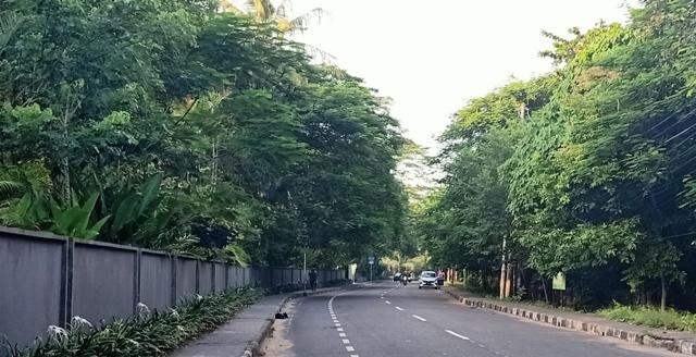 日曜日なのに道路もビーチもガラガラです。_d0083068_18255541.jpg