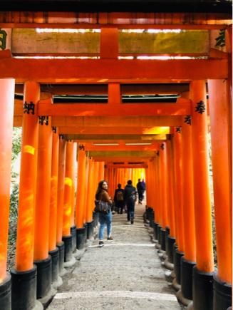京都旅③~憧れの伏見稲荷と金閣寺_e0078071_18415848.jpg