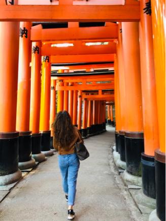 京都旅③~憧れの伏見稲荷と金閣寺_e0078071_18415919.jpg