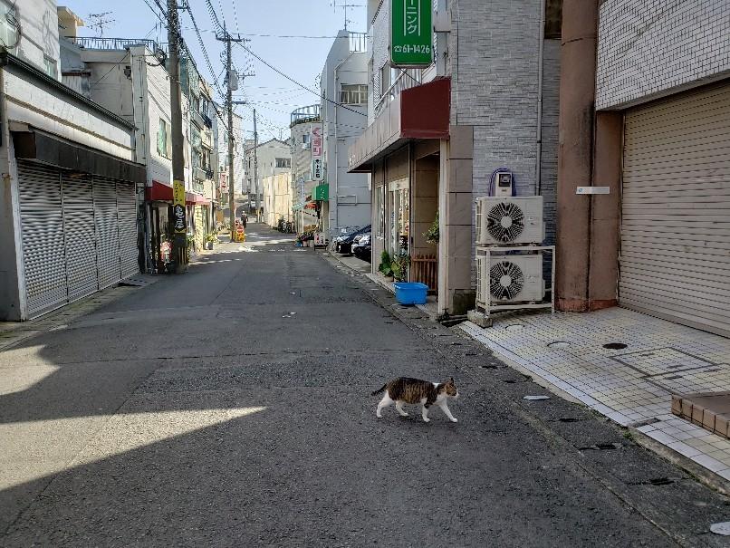 稲佐商店街は今_c0193077_17064633.jpg