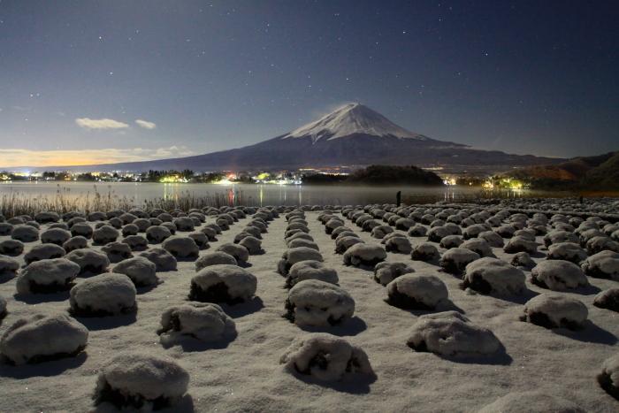 令和2年3月の富士 (14) 雪の大石公園からの富士_e0344396_18374605.jpg