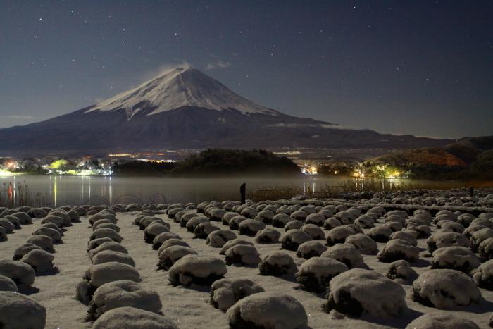 令和2年3月の富士 (14) 雪の大石公園からの富士_e0344396_18375418.jpg