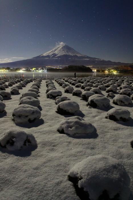 令和2年3月の富士 (14) 雪の大石公園からの富士_e0344396_18380113.jpg