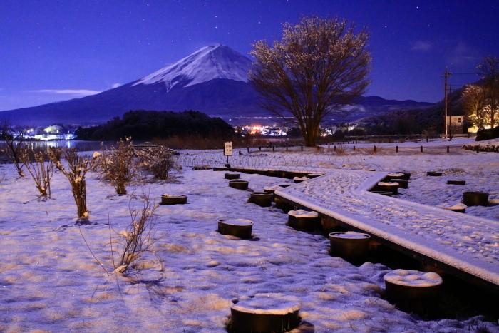 令和2年3月の富士 (15) 大石公園花街道の富士_e0344396_20465982.jpg