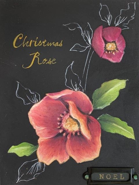 クリスマスローズ 14th_b0173802_16240966.jpg