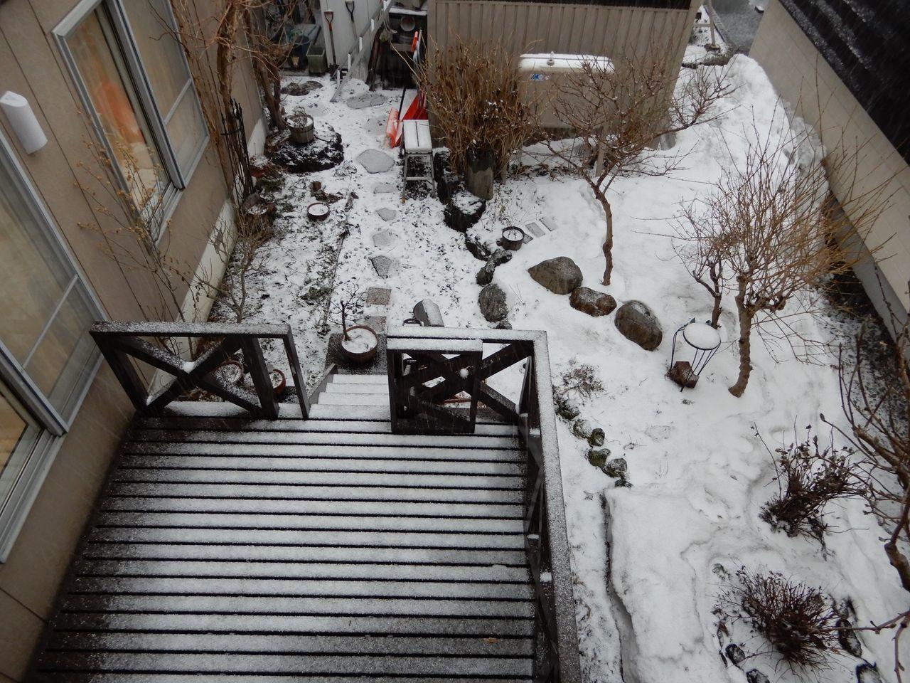 ちょっとだけ寒さ戻る_c0025115_23051406.jpg