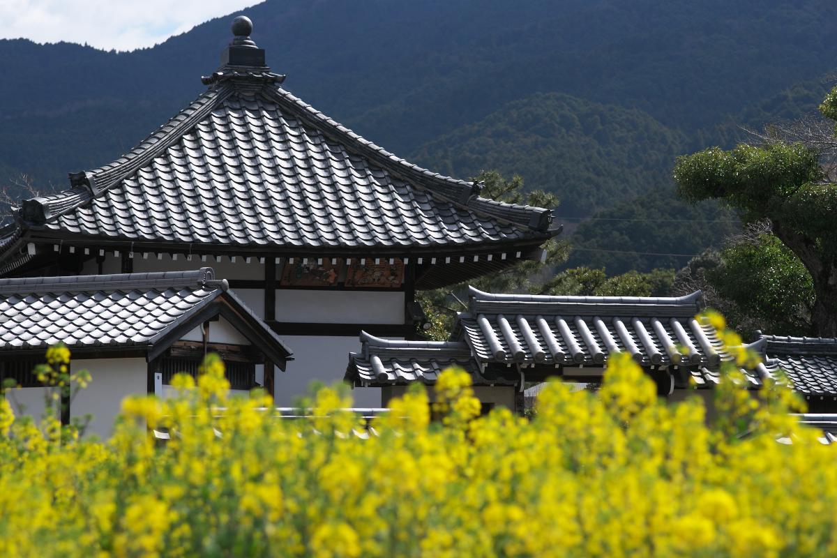 飛鳥寺界隈_b0408917_16350226.jpg