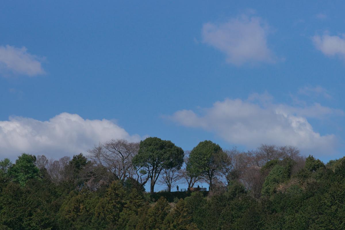 飛鳥寺界隈_b0408917_16354926.jpg