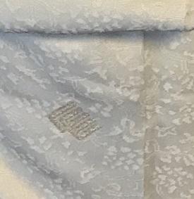 二条城煎茶会・野村エミさん・三眠蚕のぼかしの着物。_f0181251_16021726.jpg