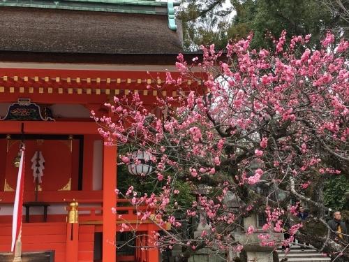 京都・奈良 冬の旅'20 その6_e0326953_18343636.jpg