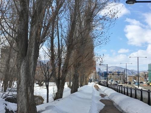 京都・奈良 冬の旅'20 その6_e0326953_19104621.jpg