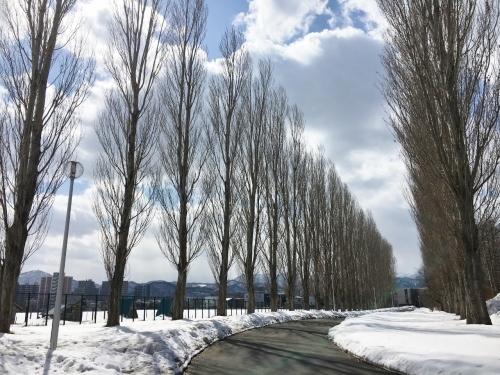 京都・奈良 冬の旅'20 その6_e0326953_19110457.jpg