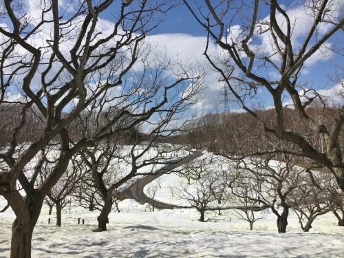 京都・奈良 冬の旅'20 その6_e0326953_19125090.jpg