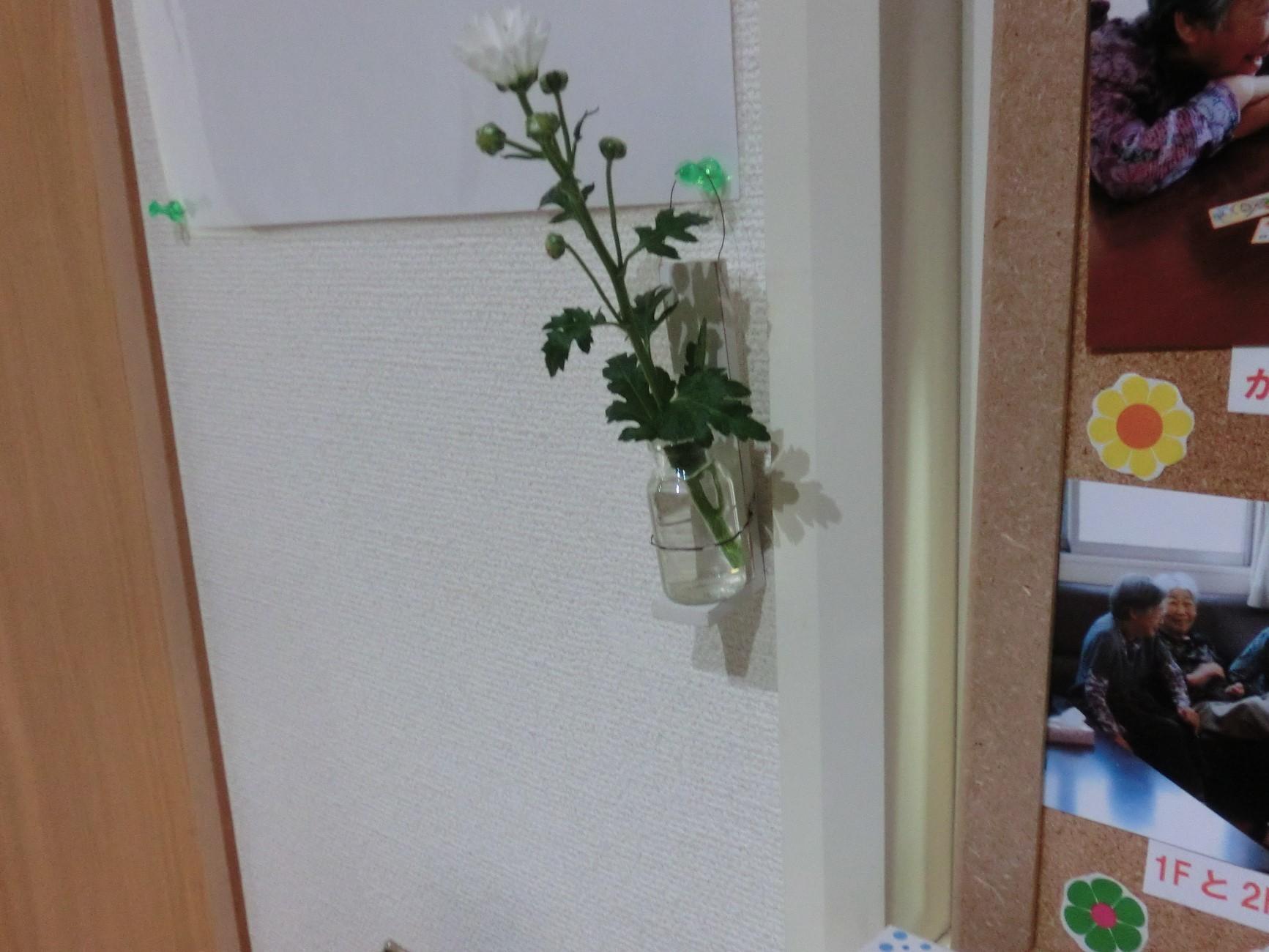 生花!_d0178056_20343268.jpg