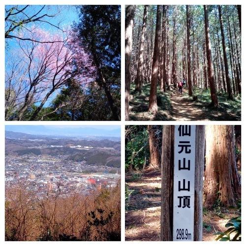 和紙の町小川町から武蔵嵐山渓谷へハイキング・・・_f0310557_14194781.jpg