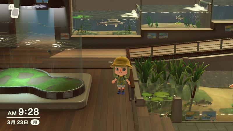 ゲーム「あつまれどうぶつの森 博物館オープン&シーラカンス釣り上げたぞ!!」_b0362459_22213784.jpg