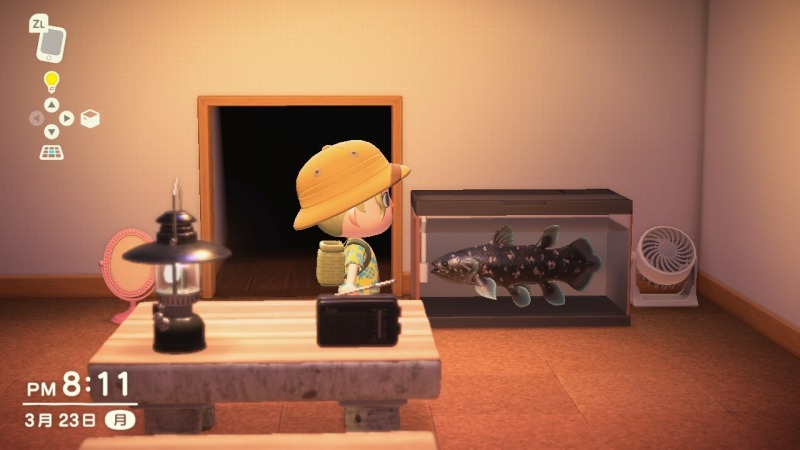 ゲーム「あつまれどうぶつの森 博物館オープン&シーラカンス釣り上げたぞ!!」_b0362459_22423032.jpg